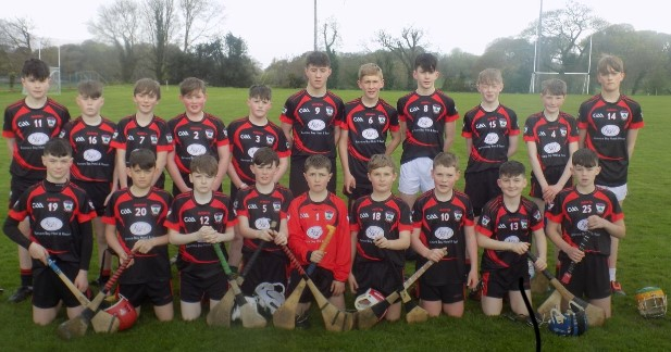 Féile Hurling Team